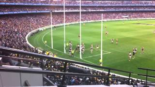 2013 AFL EF1 Richmond v Carlton - Robinson