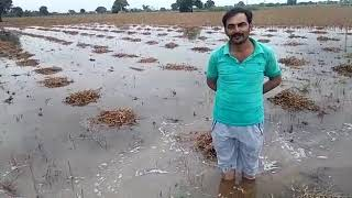 Funny frustrated kisan
