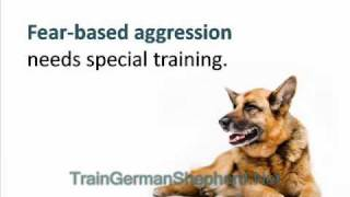 How to Train an Overly Aggressive German Shepherd