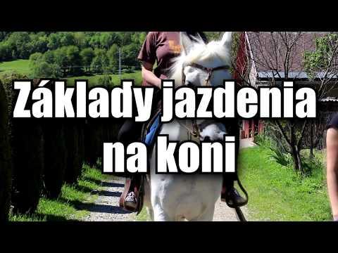 Základy jazdenia na koni