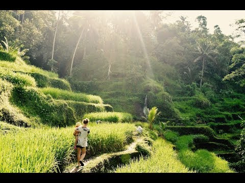 IS THIS PLACE FOR REAL? | LIFE in BALI