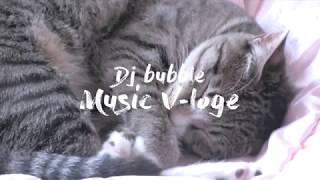 고양이 Music Vloge day2. 나른한 주말오후