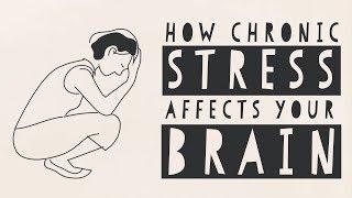 видео Может ли стресс убить человека?