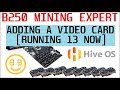 Adding a GPU to my Asus B250 Mining Expert - Running 13 NVIDIA cards in HIVE OS