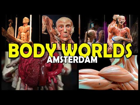 BODY WORLDS - Amsterdam 4K