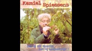 1995 KAMIEL SPIESSENS het isj niet moeilijk het isj gemakkelijk