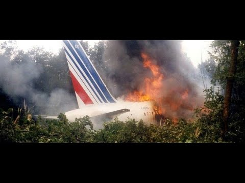 Air Disasters - Pilot vs Plane (Air France Flight 296)