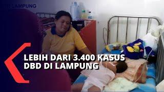 Dipandu oleh Andri Hariyanto selaku staf Pusat Informasi dan Humas UNAIR, video ini mengulas mengena.