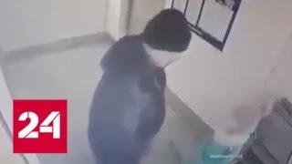 Камера запечатлела приставания педофила к ребенку в Кургане - Россия 24
