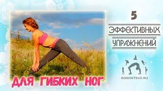 5 Эффективных упражнений для ГИБКИХ НОГ / Растяжка задней поверхности ног(Серия