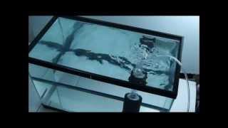 Aquarium air pump vs water pump
