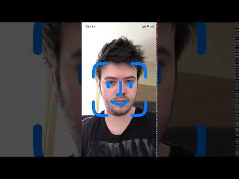 iPhone X — Face ID setup and interface leak from iOS 11 GM