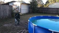 Frozen pool in Pensacola - Florida - Freeze weather