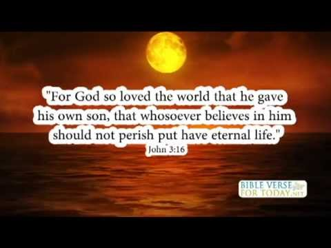 Favorite Bible Verses John 3:16 | Bible Verse | (Daily for Quotes On Love)