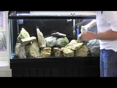 Fincasters Episode 50: Setting up an African Cichlid Aquarium