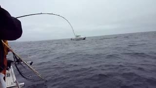 Salmon Fishing Muir Beach
