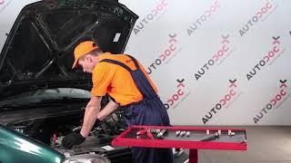 Playlist completa di AUTODOC CLUB per la manutenzione di VW GOLF