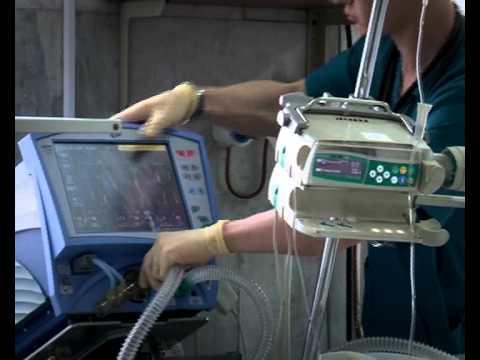 Поликлиника киреевска расписание приема врачей
