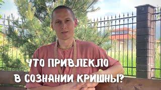 Артём Леонов (Ачьюта прабху) - Что привлекло в Обществе Сознания...