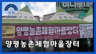 [양평군] 양평군 제3기 SNS서포터즈 류원석-양평농촌…