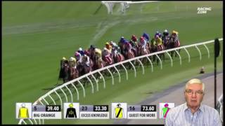 How To Pick The Winner Of The 2016 Melbourne Cup