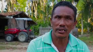 Desafios sócio-ambientais da cadeia da palma de óleo na Amazônia Oriental