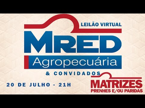 Lote 03 (MRED 130 / 203 / 222 / 294)