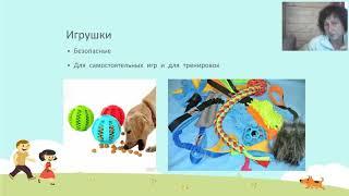 Собака без проблем Татьяна Шаманова
