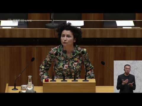 20170516 Nationalratssitzung 1 Alev Korun Die Grünen 0810586191