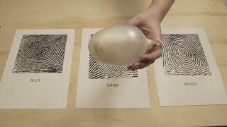 Fingerprint Patterns   DIY Crime Scene Investigator Activities   Whodunit?