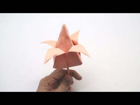 How to make a paper tulip flower   DIY Easy tutorial