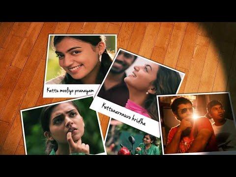 Kattu Mooliyo Official Full Song - Ohm Shanthi Oshaana