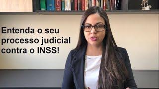 Entenda o seu processo judicial contra o INSS!
