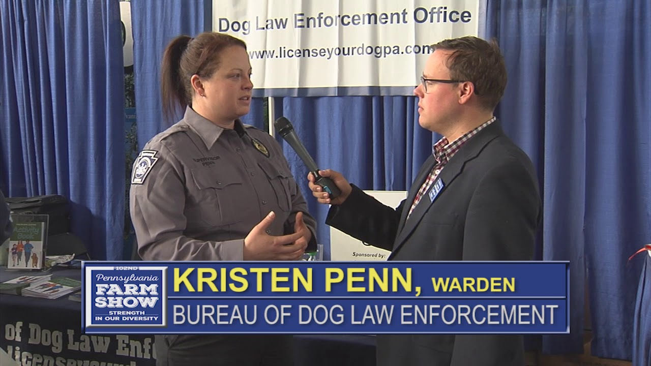 Dog Law Enforcement Clarification