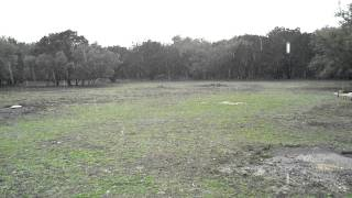 SOUNDSCAPE: Texas Hill Country Rain Storm