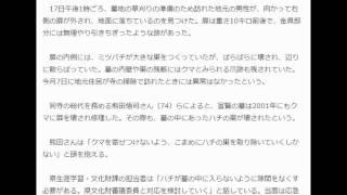 墓内のハチミツ狙いクマが石扉破壊福井県指定文化財の史跡 荒らす