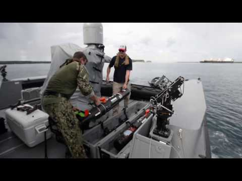 REMUS 100: The Industry Standard Compact Man-Portable AUV