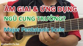 Học đàn guitar - Âm giai và ứng dụng: Ngũ Cung TRƯỞNG (Major Pentatonic) [HocDanGhiTa.Net]