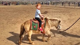 Adley rides BABY SPIRIT the horse!! Family day play with farm animals!