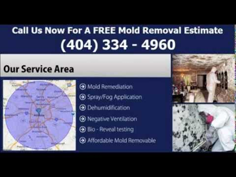 mold-inspection-atlanta-ga---free-estimates-|-atlanta-mold-inspection