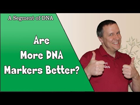 Do More Test Markers Matter? - A Segment of DNA