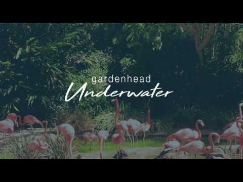 """Gardenhead """"Underwater"""""""