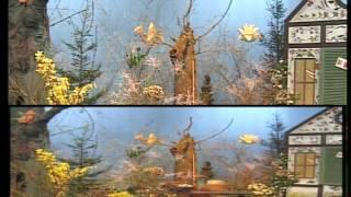 Chatka w kwiatki - CHOCHLIKI