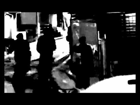 Selvagem -  PARALAMAS DO SUCESSO