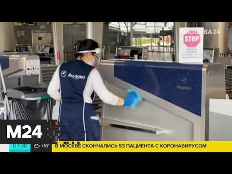 Как заботятся о безопасности пассажиров в аэропорту Внуково - Москва 24