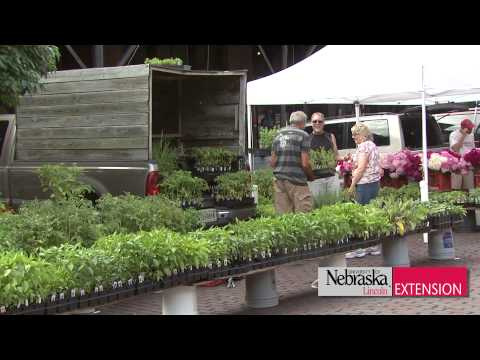 Omaha Farmer's Market