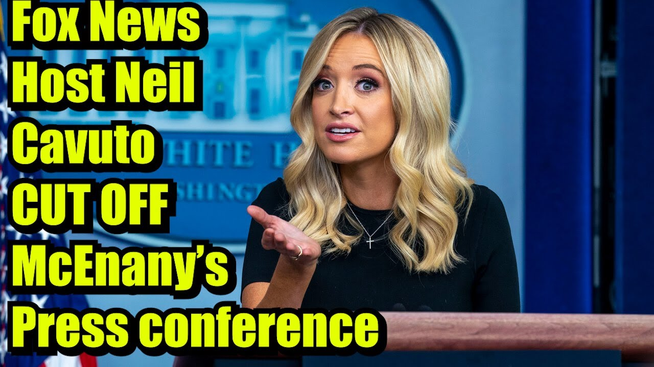 'Whoa'  Fox News cuts off Kayleigh McEnany for 'illegal votes' spiel