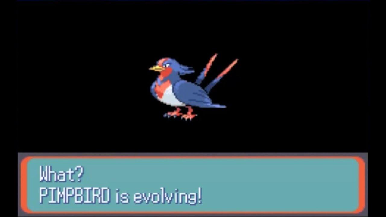 Pokemon Shire Part 10 Swellow Evolves