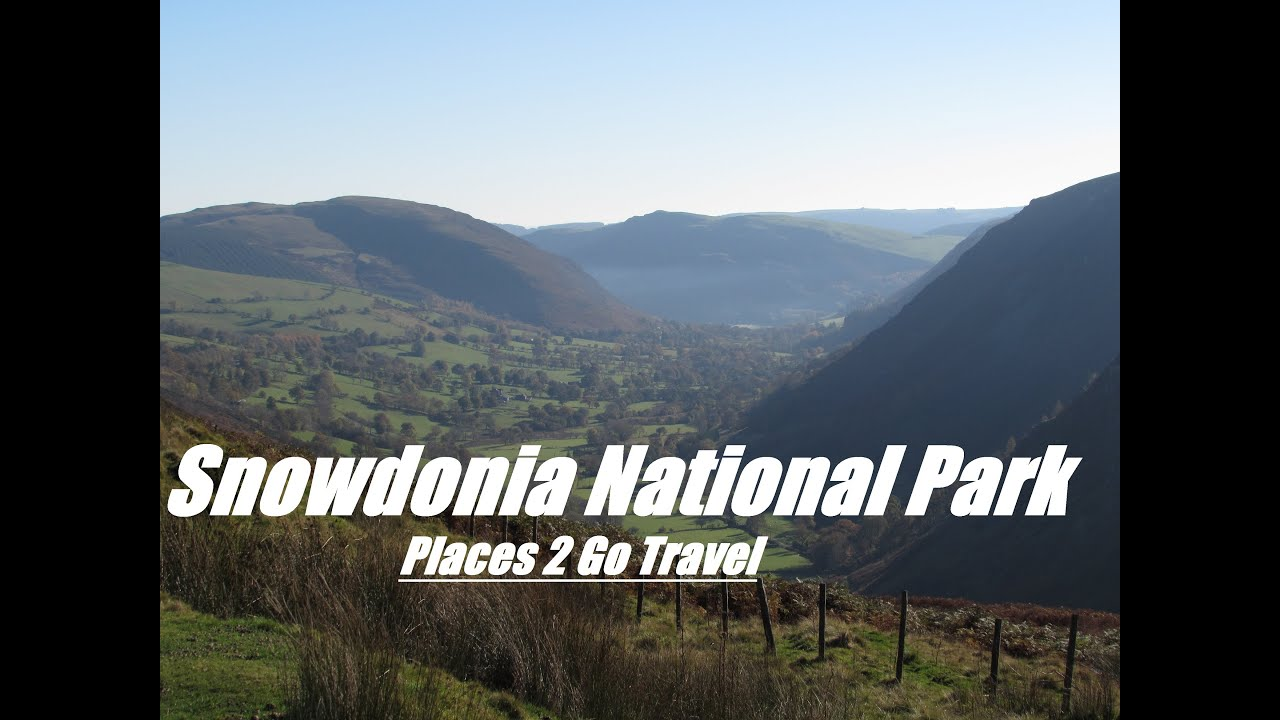 Dog Walking In Snowdonia National Park