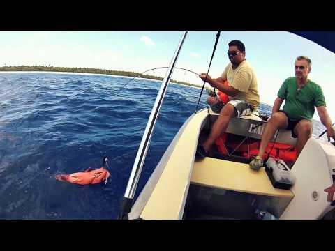 Session pêche unique aux Tuamotus !